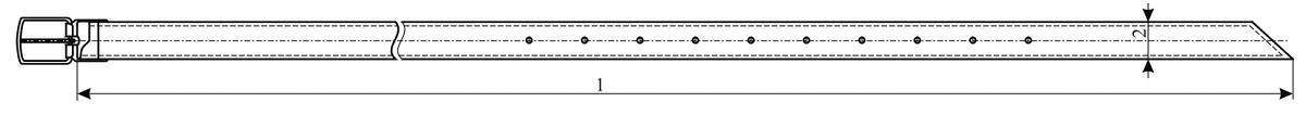 Пояс кожаный для военнослужащих женского пола, ТУ 858-6125-2010. Внешний вид